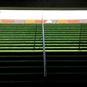Grama-Estadio-Atanasio-Girardot-Medellín
